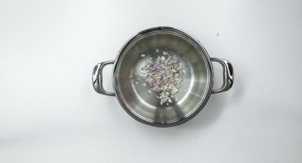 Pelar las cebollas y el ajo, cortar todo finamente en el Quick Cut y verterlo en la Gourmet. Limpiar las berenjenas y cortarlas en cubos (1 cm x 1 cm).