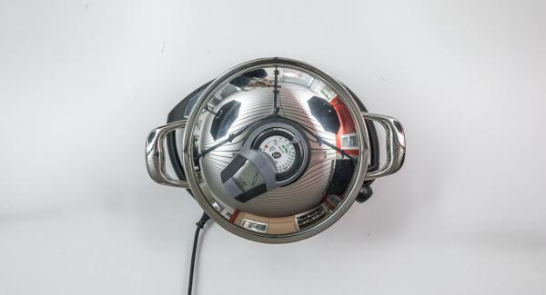 """Colocar la olla en el Navigenio a temperatura máxima (nivel 6). Encender el Avisador (Audiotherm), introducir 20 minutos de tiempo de cocción. Colocarlo en el pomo (Visiotherm) y girar hasta que aparezca el símbolo de """"Zanahoria""""."""