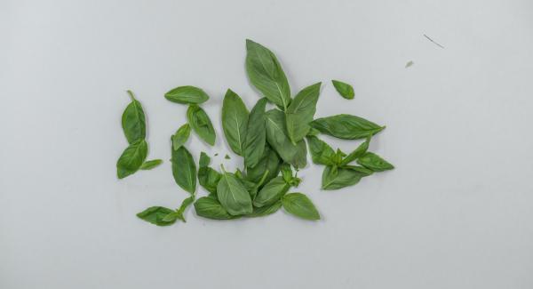 Quitar las hojas de la albahaca, cortarla a trozos grandes y hacer un puré fino con el aceite de oliva. Sazonar con un poco de sal.