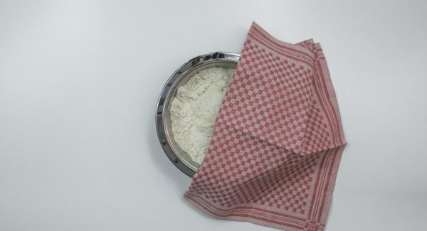 Tapar el bol con un paño y dejar reposar durante unos 20 minutos hasta que el volumen haya aumentado considerablemente.