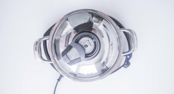 """Seleccionar la función (A) en el Navigenio e introducir 2 minutos de tiempo de cocción en el Avisador (Audiotherm). Colocarlo en el pomo (Visiotherm) y girar hasta que aparezca el símbolo de """"zanahoria""""."""