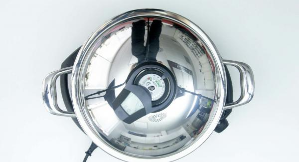 """Seleccionar la función (A) en el Navigenio encender el Avisador (Audiotherm), introducir 15 minutos de tiempo de cocción. Colocarlo en el pomo (Visiotherm) y girar hasta que aparezca el símbolo de """"Zanahoria""""."""