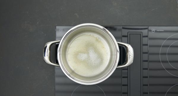 Poner el azúcar en una olla adecuada y colocarla en el fuego a temperatura máxima. Tan pronto como el azúcar empiece a derretirse, bajar la temperatura y caramelizar ligeramente.