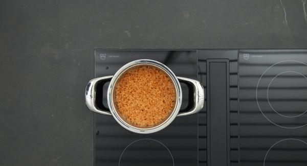"""Cuando el Avisador (Audiotherm) emita un pitido al llegar a la ventana """"zanahoria"""", bajar temperatura y cocinar hasta el final."""