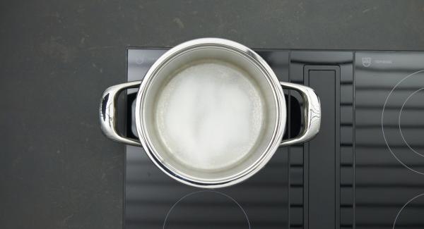 Poner el azúcar en la olla y colocarla en el fuego a temperatura máxima. Tan pronto como el azúcar comience a derretirse, bajar la temperatura a un nivel bajo y caramelizar ligeramente.
