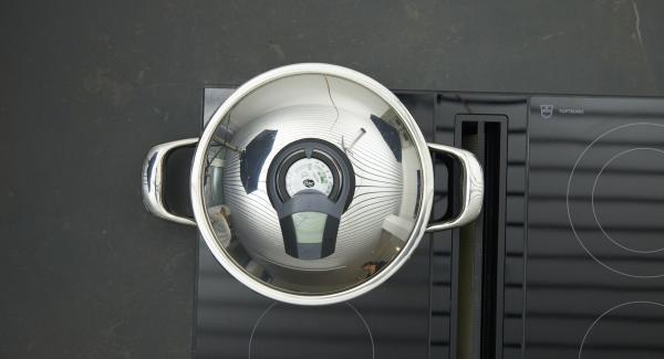 Tapar, ajustar el Avisador y girar hasta alcanzar los 90 °C de temperatura. Dar la vuelta al salmón, apagar el fuego y dejar reposar unos 3 minutos con la tapa puesta.