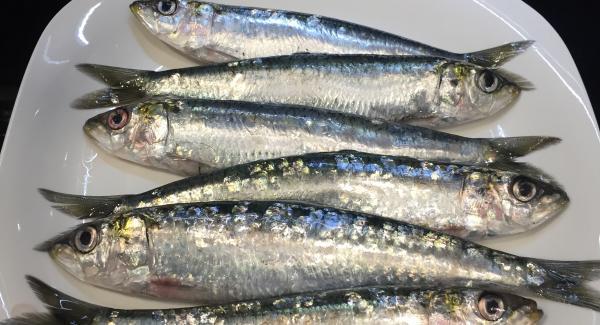 Limpiamos las sardinas con ayuda de papel de cocina, solo quitamos las escamas que estén sueltas sin quitar ni la tripa ni la cabeza